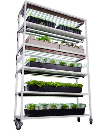 Vertical Grow Shelf